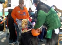 Halloween_walk_102806_b